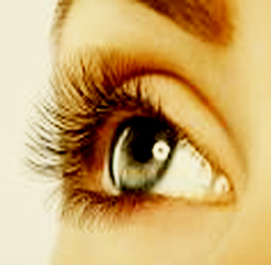 EYELASH EXTENSIONS FUNDAMENTAL TRAINING